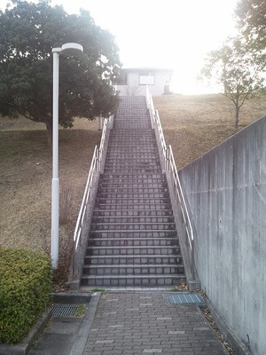 道1.jpg