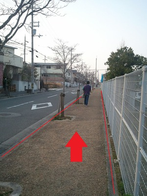 道2.jpg
