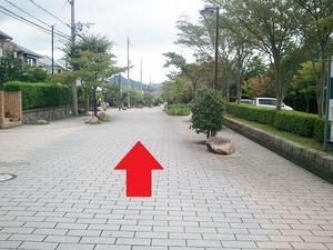 ほっとへの道1.jpg